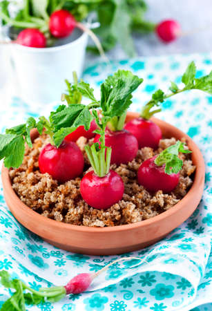 chese: Appetizer with radish and cream cheese