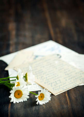 old letters: Fresh camomile and old letters