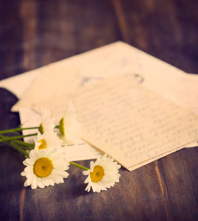 old letters: Fresh camomile and old letters. Toned image Stock Photo