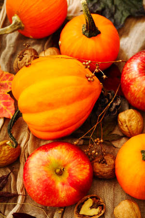Autumn pumpkins and apples with fall leaves. Autumn composition