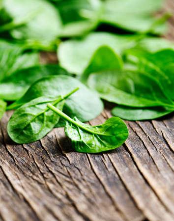Fresh baby spinach Stock Photo