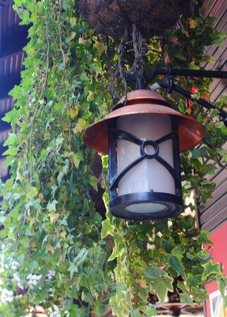 greenery: lantern on a background of  greenery Stock Photo