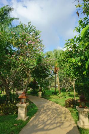 green park: beautiful green park with plants in the tropics