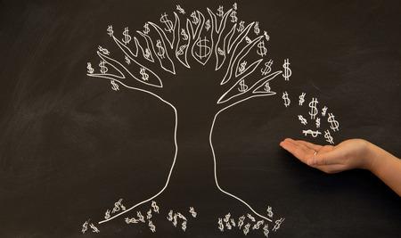 dollars from money tree on blackboard