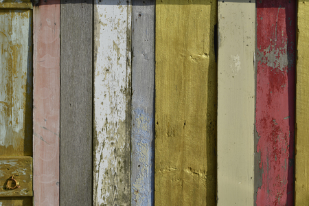 shelfs: colored wood, mixed painted shelfs