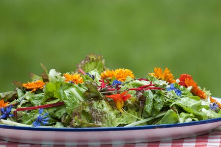 eatable: garden salad with eatable flowers, The Netherlands Stock Photo