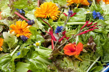 garden salad with eatable flowers, The Netherlands Stock Photo