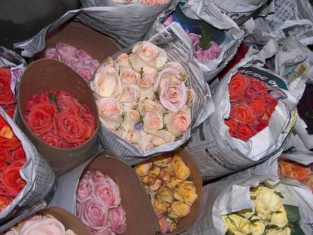 raped: roses raped in newspapers on flower market Stock Photo