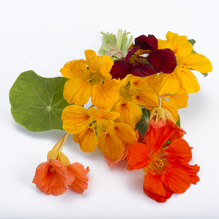 bouquet of garden nasturtium isolated on white backgound Stock Photo