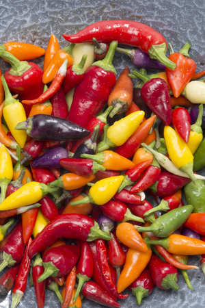 collerful mixed hot peppers in a wok pan Stock Photo