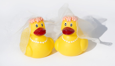 ducky: rubber ducky wedding on white background Stock Photo