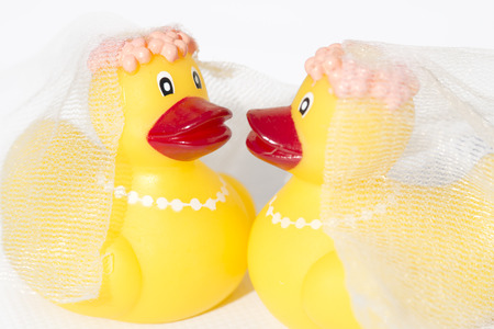 rubber ducky: rubber ducky wedding on white background Stock Photo