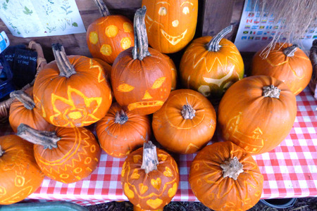 terrify: Pumpkins for holiday Halloween on a garden table Stock Photo
