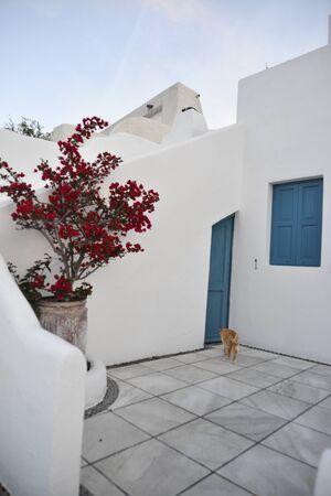 oia: house of Oia at Santorini island, Greece Stock Photo