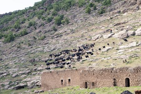 mesopotamian: very ancient and traditional killit village mardin, Turkey