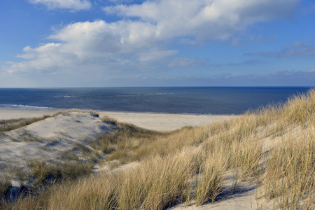 beach and dunes at Terschelling, The Netherlands