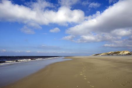 wadden: beach and dunes at Terschelling, The Netherlands