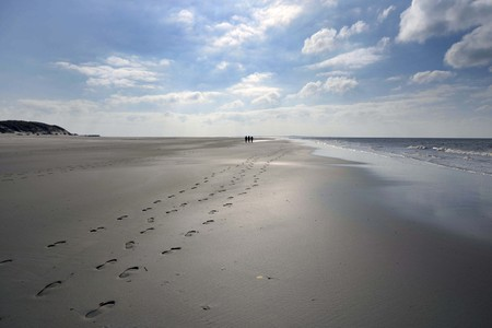 footstep: beach and dunes Terschelling in The Netherlands