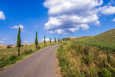agriturismo: Beautiful nature landscape of Tuscany, in Italy