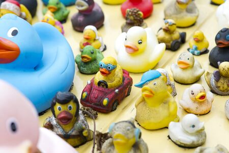 car lots: collection of all kinds off rubber ducks on car