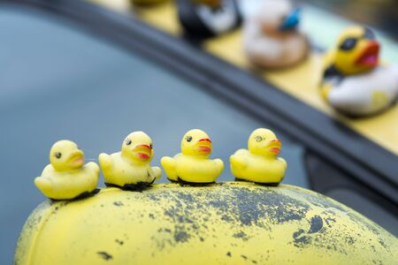 collection of all kinds off rubber ducks on car