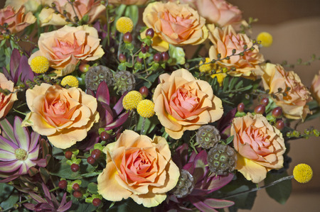 rosas naranjas: Bouquet with orange roses in vase