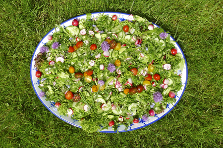 eatable: garden salad with eatable flowers in green garden Stock Photo