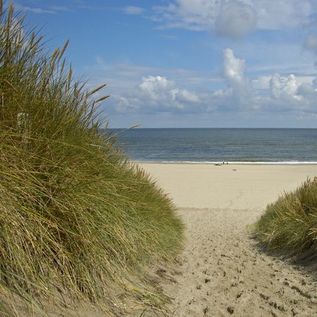 A view of the sea through the dunes, Vlieland the Netherlands