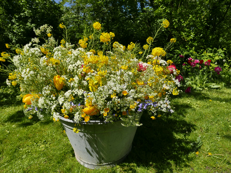 roadflower bouquets in a vintage tin bin in the garden Stock fotó - 87353543
