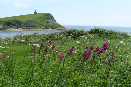 Beautiful tower on grass hill Cornwall, South England Stock Photo