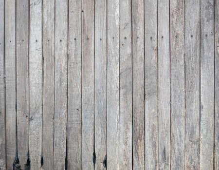 세 매립지 나무 스톡 콘텐츠 - 47277025
