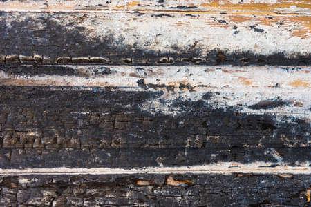 burnt wood: Old burnt wood texture