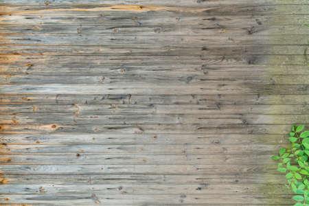 Een textuur van een oude zon gebleekte hout versierd met tak van de groene bladeren