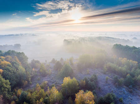 Aerial shot of meadows and forest shrouded in fog in a cold morning.