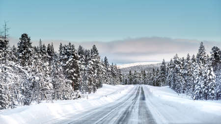A road cutting through a forest covered with snow in a cold winter day with a layer of clouds over a horizon Lizenzfreie Bilder