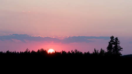 Purple sky lit by setting sun hidding behind silhouettes of trees on horizon.
