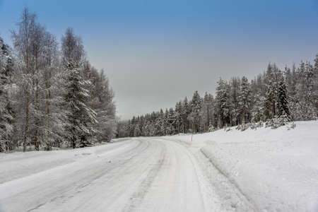 A road cutting through a forest covered with snow in a cold winter day Lizenzfreie Bilder
