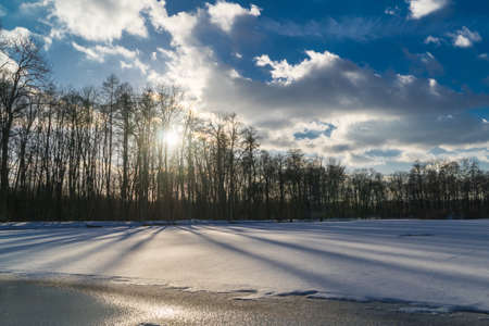 Frozen lake in a park with snow behind line of trees casting shadows on the lake surface
