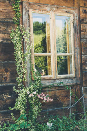 A window of an old wooden house decorated with vines Reklamní fotografie