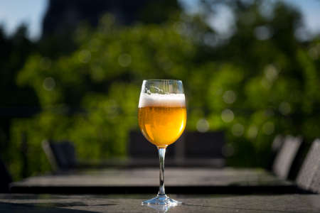 A glass of golden beer standing  on a garden table. The drink illuminated from back by sun light.