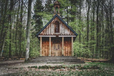 Saint Francis dřevěné svatyně v lese Reklamní fotografie