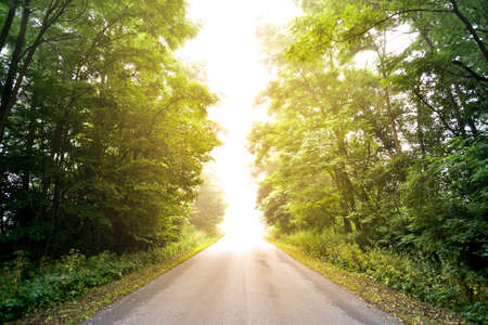 Cesta k slunci