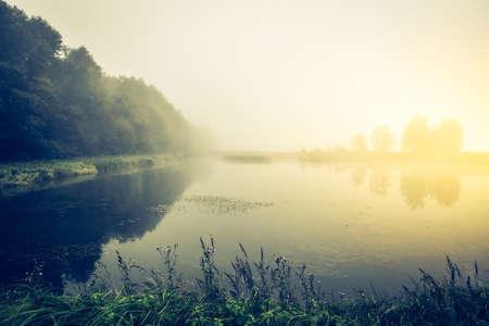 Fog over a lake Standard-Bild