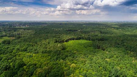 Wolken werfen Schatten auf Wald Lizenzfreie Bilder