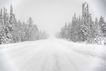 Road through snow