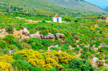 andros: Traditional small Greek church with red roof among bushes, Greece Stock Photo