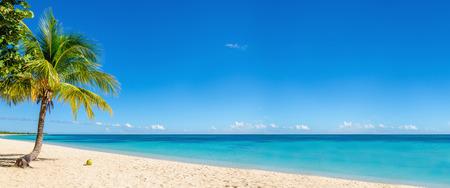 Exotisch strand met gouden zand, kokosnotenpalm en diepe blauwe hemel, Caribische eilanden