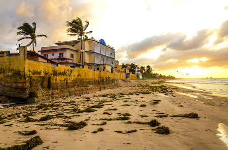 st lucia: A man with a backpack walking along the beach in Varadero full of algae, Cuba