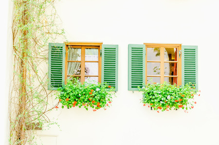 refuge: Two brown windows with green shutters and flowers in wooden white rural house, Europe