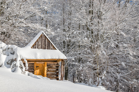 Quiet mountain cabin in white winter scenery 免版税图像